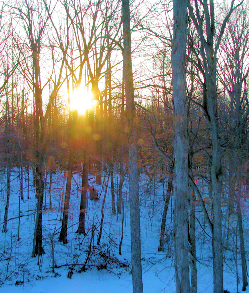 """""""Sunset in Winter"""" - Photo by Marg Herder"""