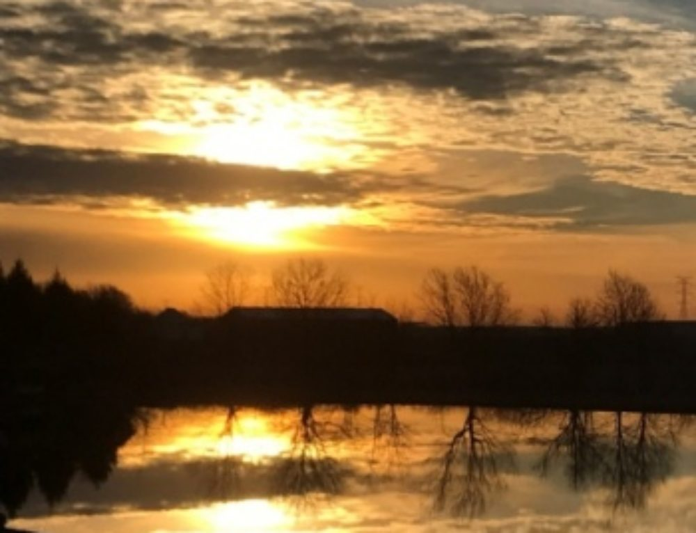 Still Quiet Moments: Loss & Healing