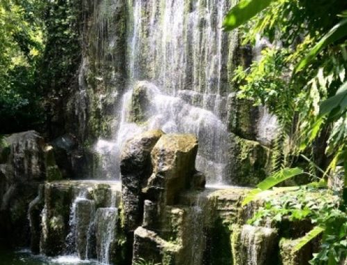 The Flowing Waters of Grief: The Healing Powers of Love