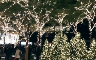 Holiday in NYC - Photo by Emmeline Ensign